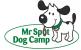 Mr Spot Dog Camp